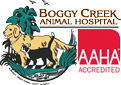 Boggy Creek Animal Hospital